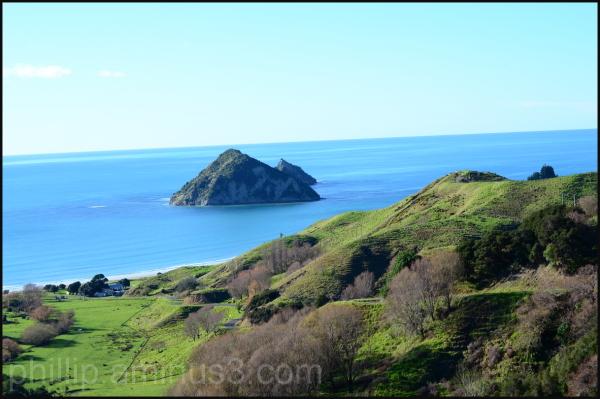 """Motuoroi Island'"