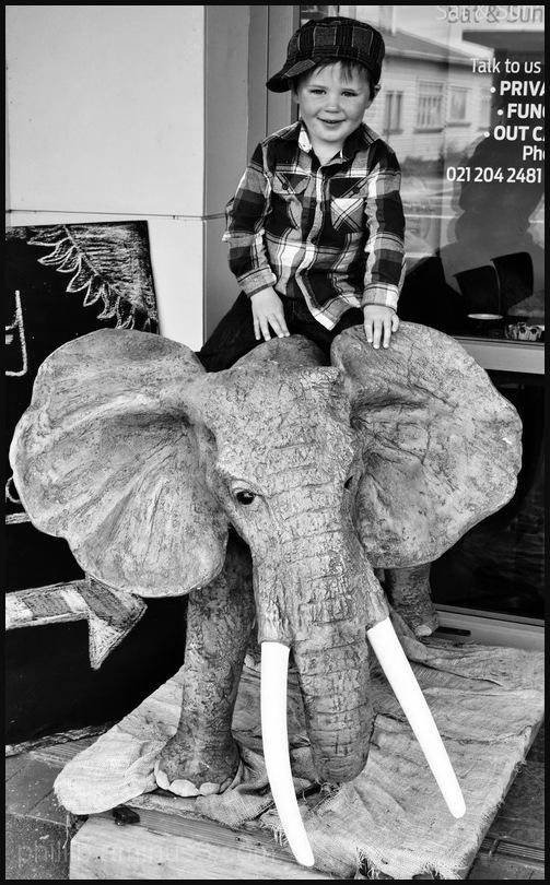 """""""Elephant Boy"""""""