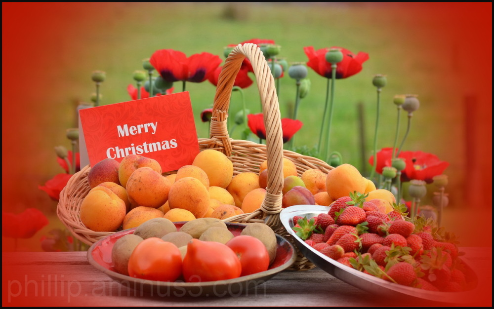 """Merry Christmas everyone"""
