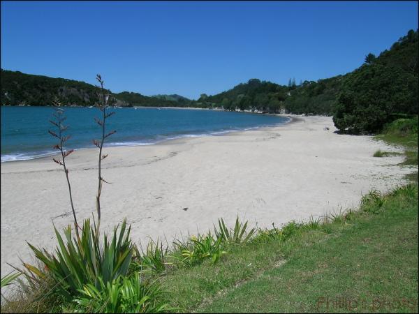 """""""Front Beach Whitianga"""""""