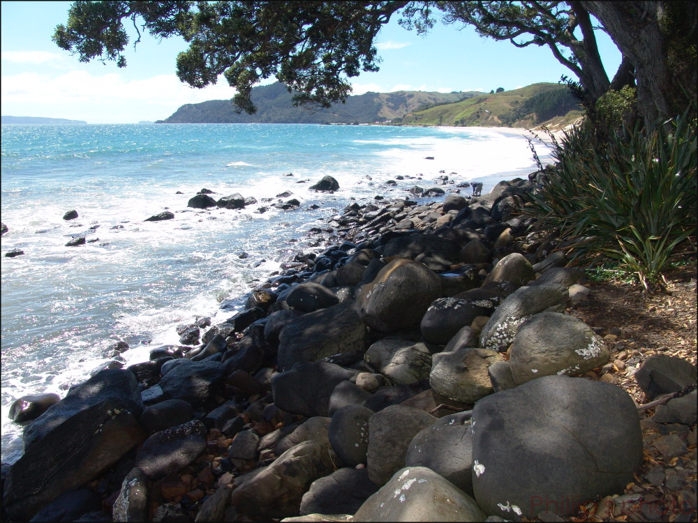 """Kuaotunu Beach"""