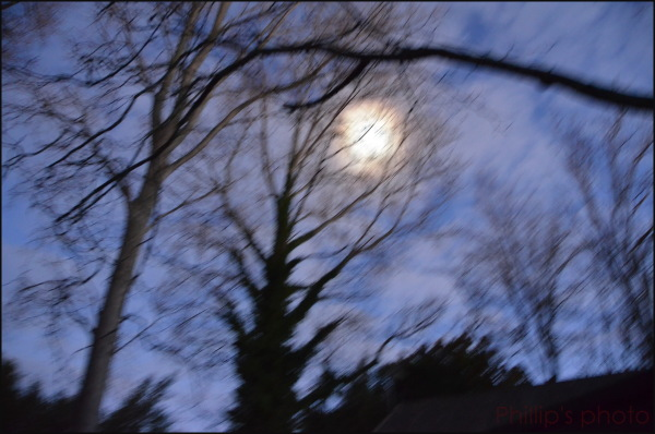 """""""Ghostly Moon"""""""
