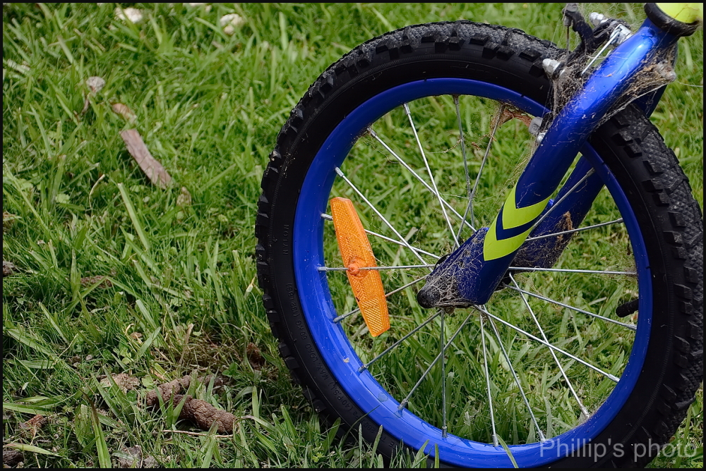 One Wheel.