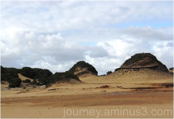 Kurnell sand dunes