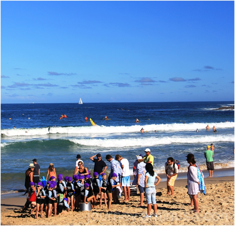 Cronulla Little Nippers Surfcarnival