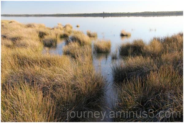 Lake Preston Foreshore
