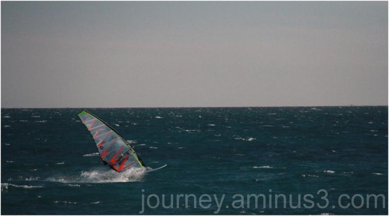 Freo windsurfin
