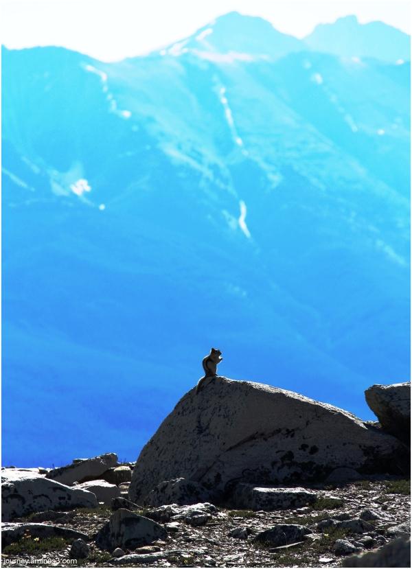 Jasper Summit14