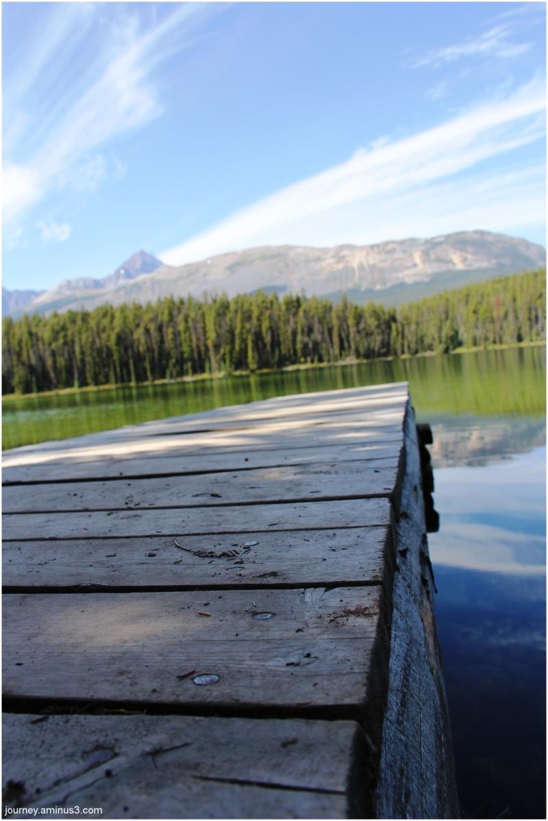 Marmot lakeside