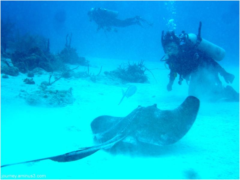 Atlantis Ray