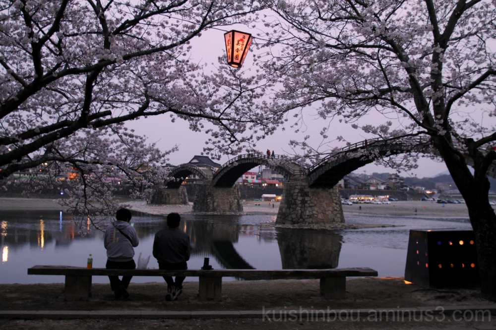 Hanami at the Kintai Bridge