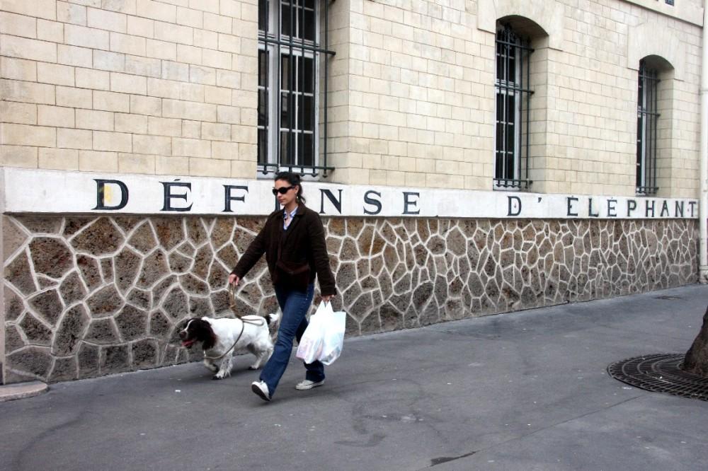 paris art-urbain message