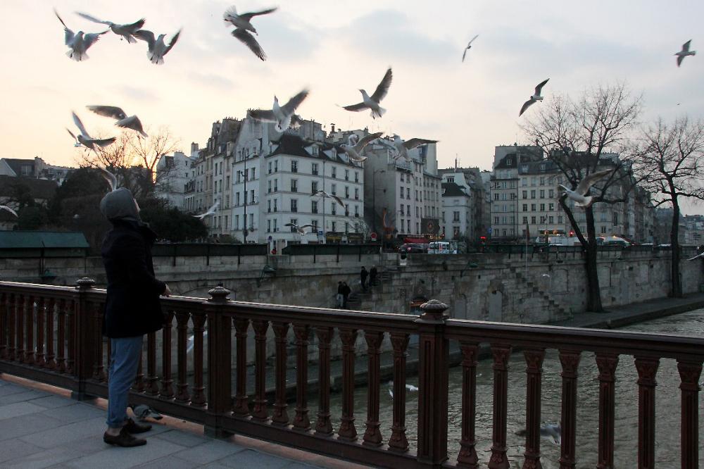 paris quai-de-seine