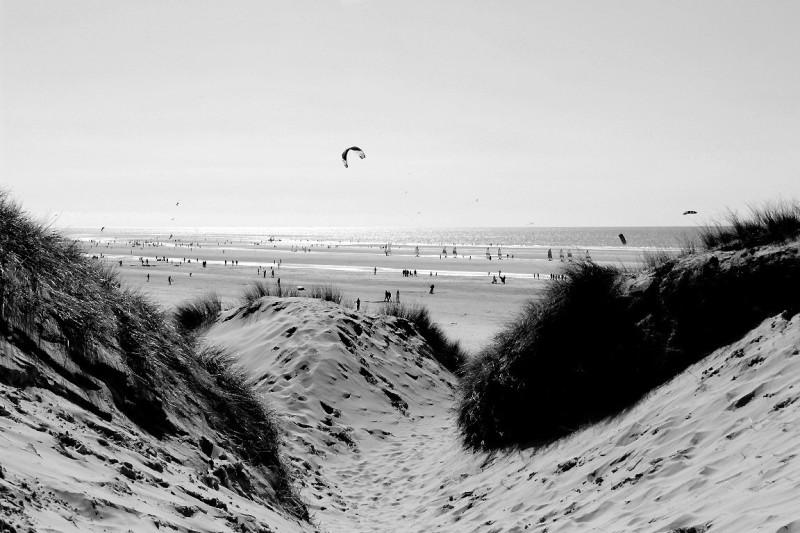 mer plage noir-blanc cerf-volant