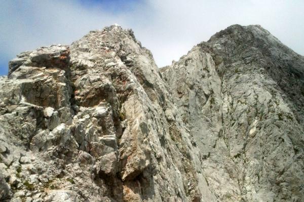 Arista de Torre Salinas