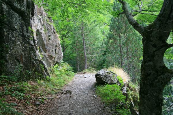 Camino de Respomuso