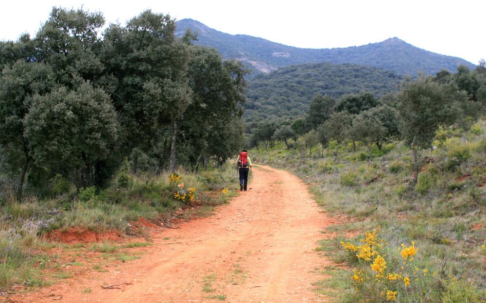 Ruta Jacobea y GR99