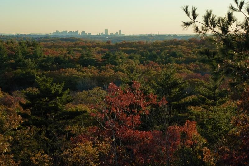 Fall foliage at Lynn Woods overlooking Boston