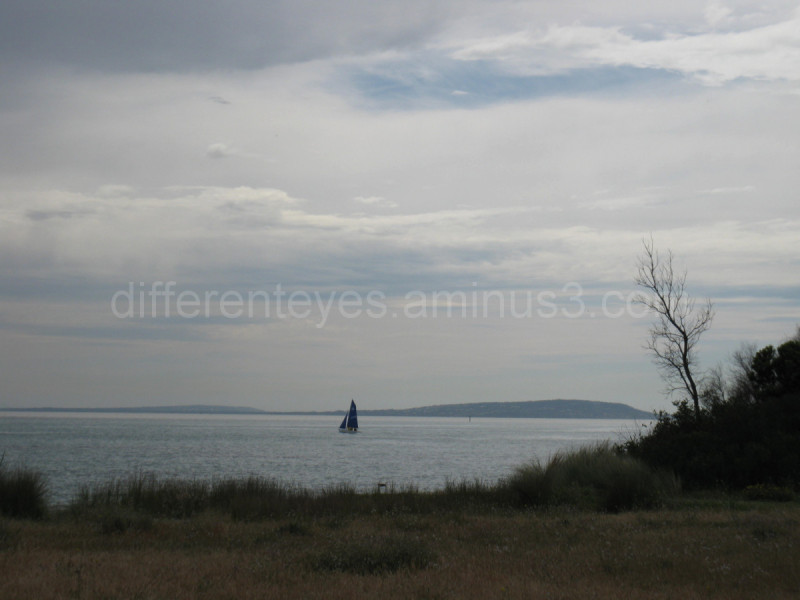 Seascape and yacht, Rye, Port Phillip Bay