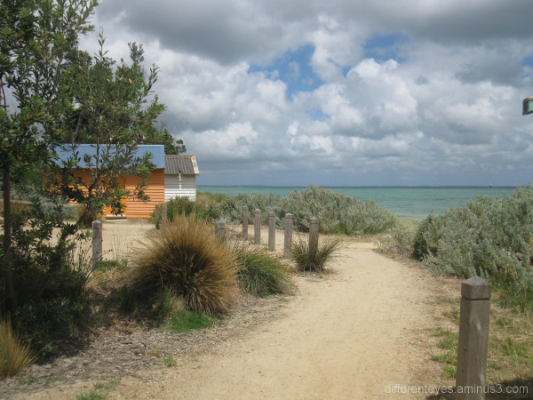 Coastal walk by Dromana beach.