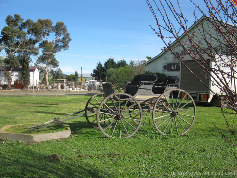 Old carriage on display at Tyabb Packing House