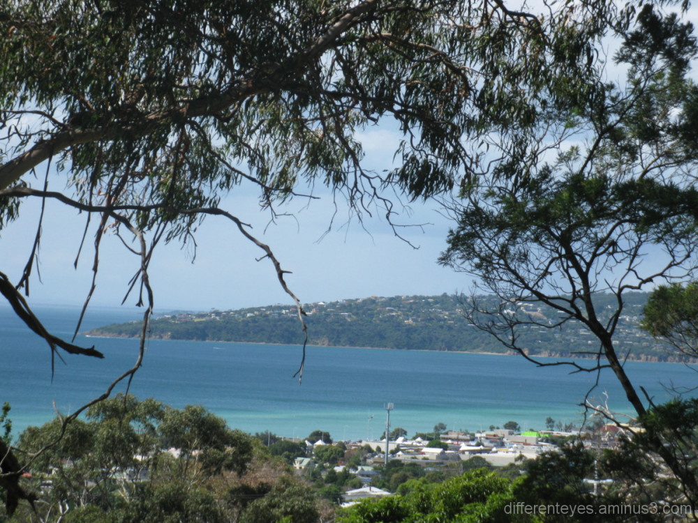 View of Port Phillip Bay from Arthurs Seat