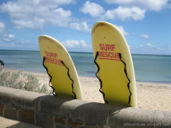 Surf rescue boards at Dromana beach