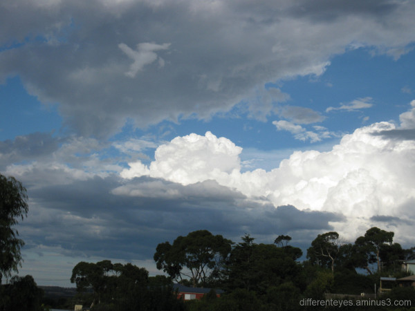 Cloud contrasts in the Dromana Hills