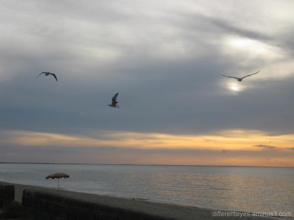 Autumn sunset over Port Phillip Bay