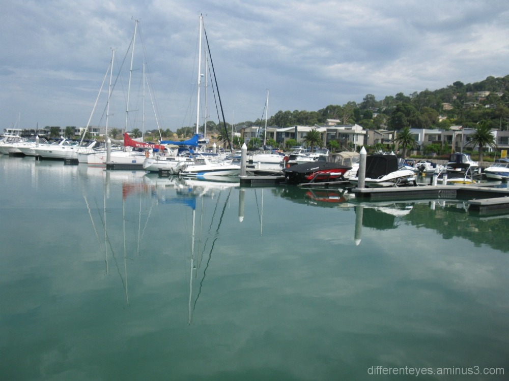Martha Cove marina reflections