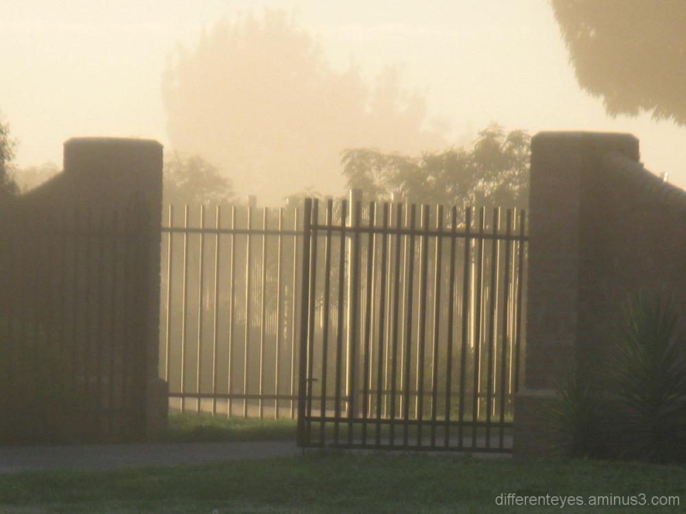 misty gates