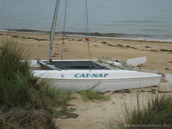 Boat on Dromana beach