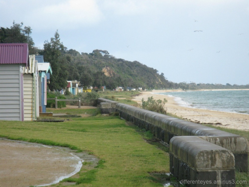 Dromana beach and boatsheds