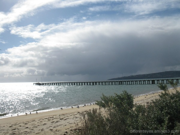 Winter silver waters in Dromana