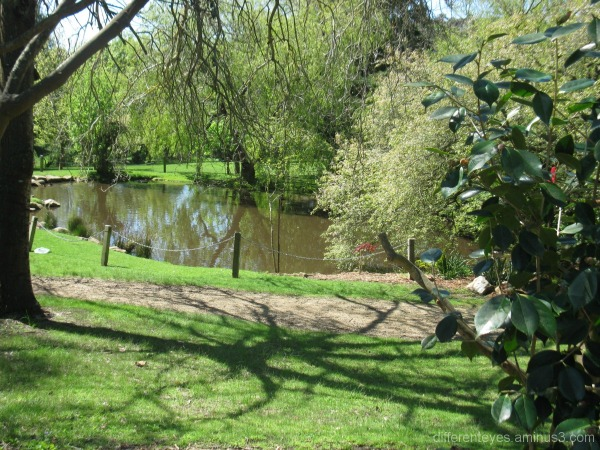 View of pond at Seawinds, Arthurs Seat