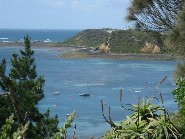 view of a headland from Flinders
