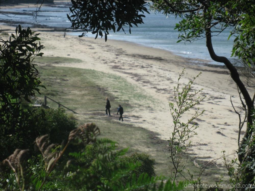 Point Leo beach on Westernport Bay
