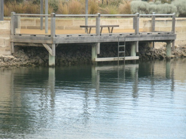 Pier at Mount Martha marina