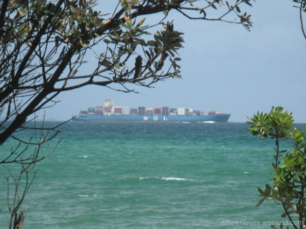 Boat viewed from Dromana beach