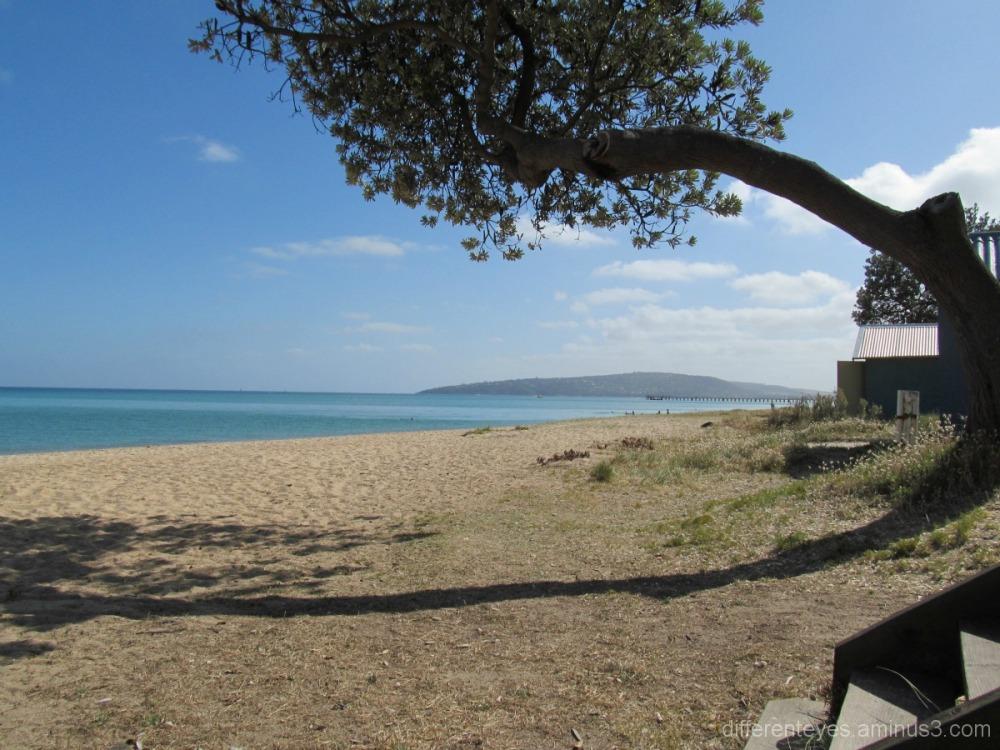 Summer morning on Dromana beach