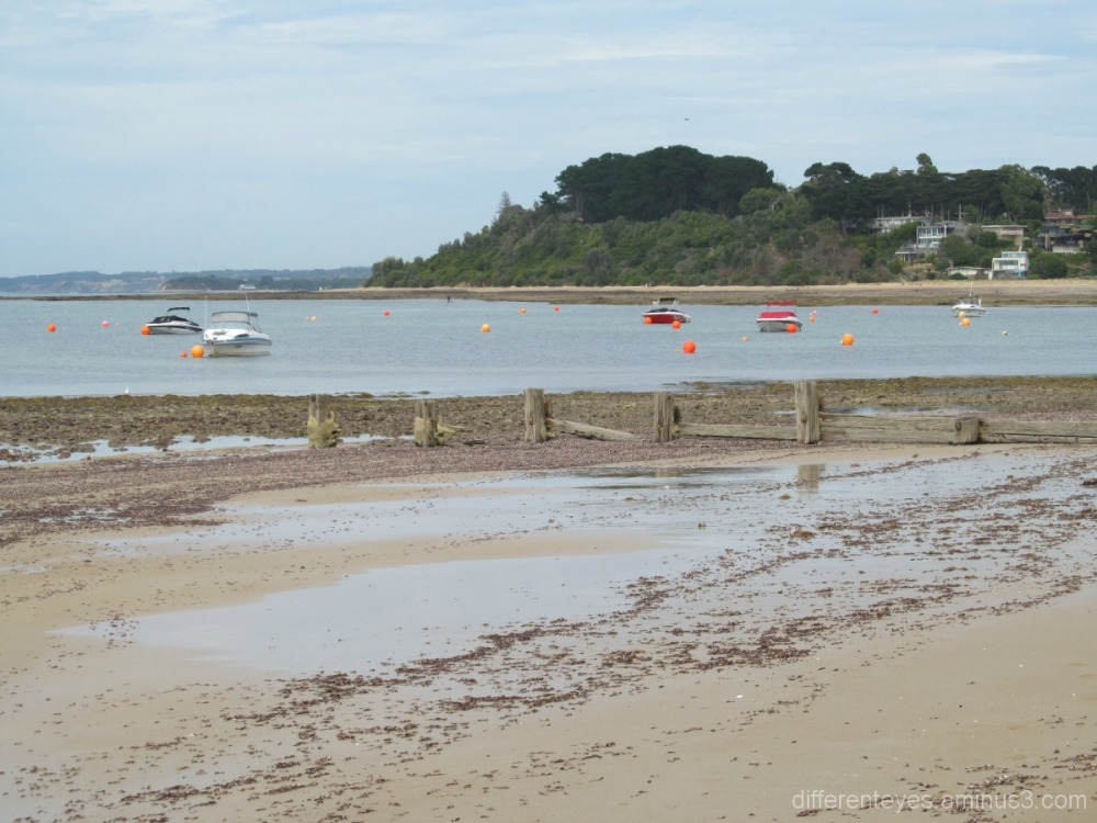 View of Balnarring beach and Westernport Bay