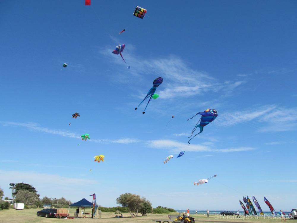 Rosebud Kite Festival 2013