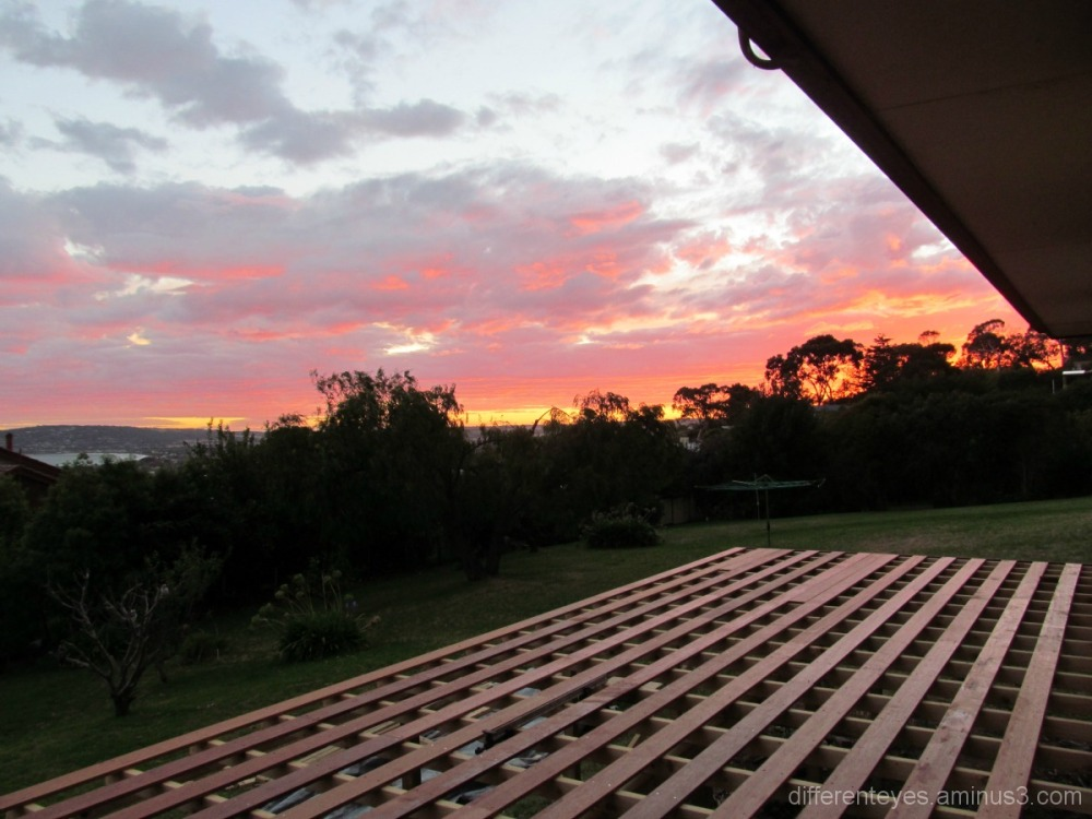 verandah planks and view