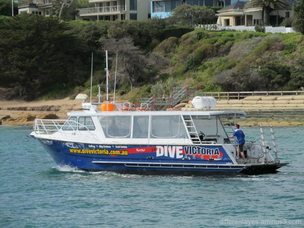 Dive Victoria boat at Portsea