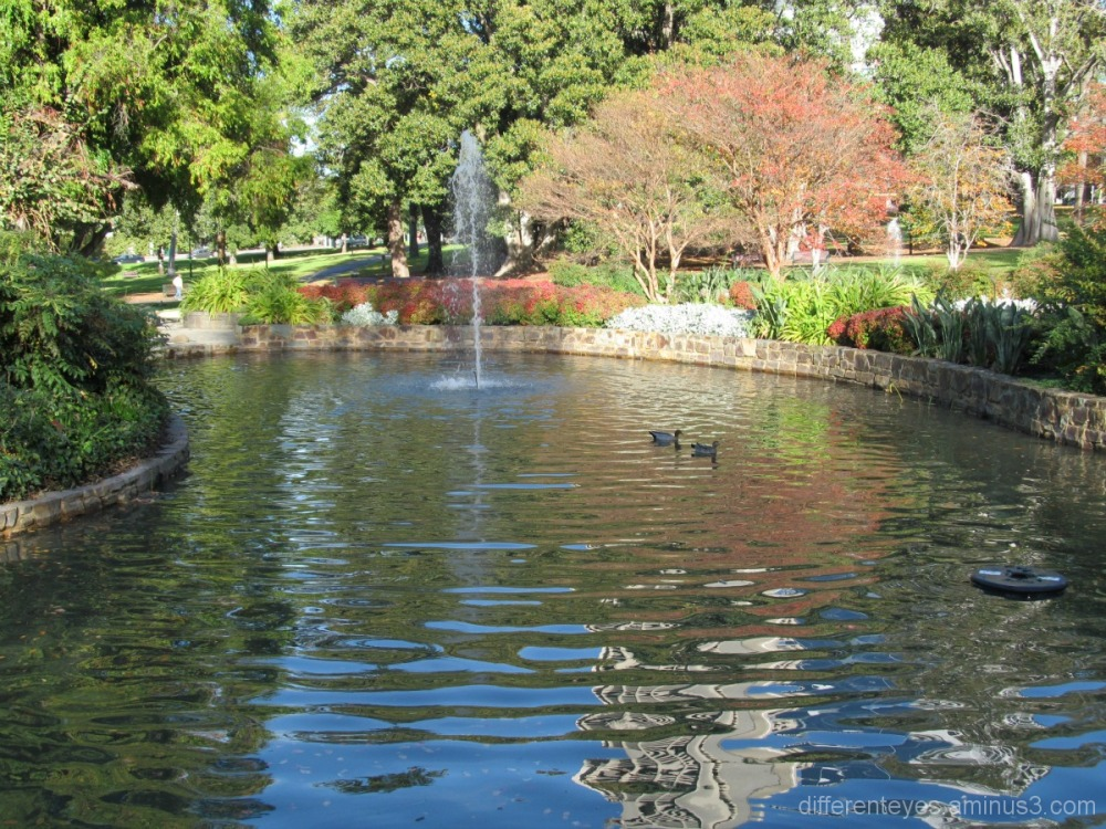 Melbourne Treasury Gardens in Autumn