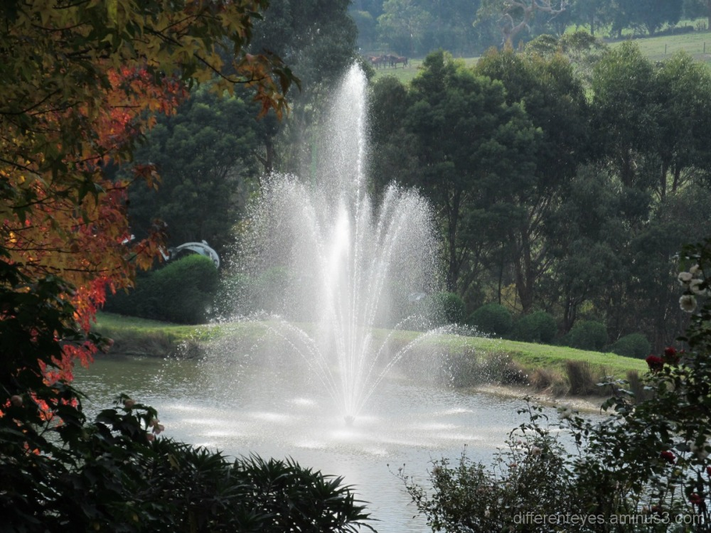 Enchanted Maze fountain in Autumn at Arthurs Seat