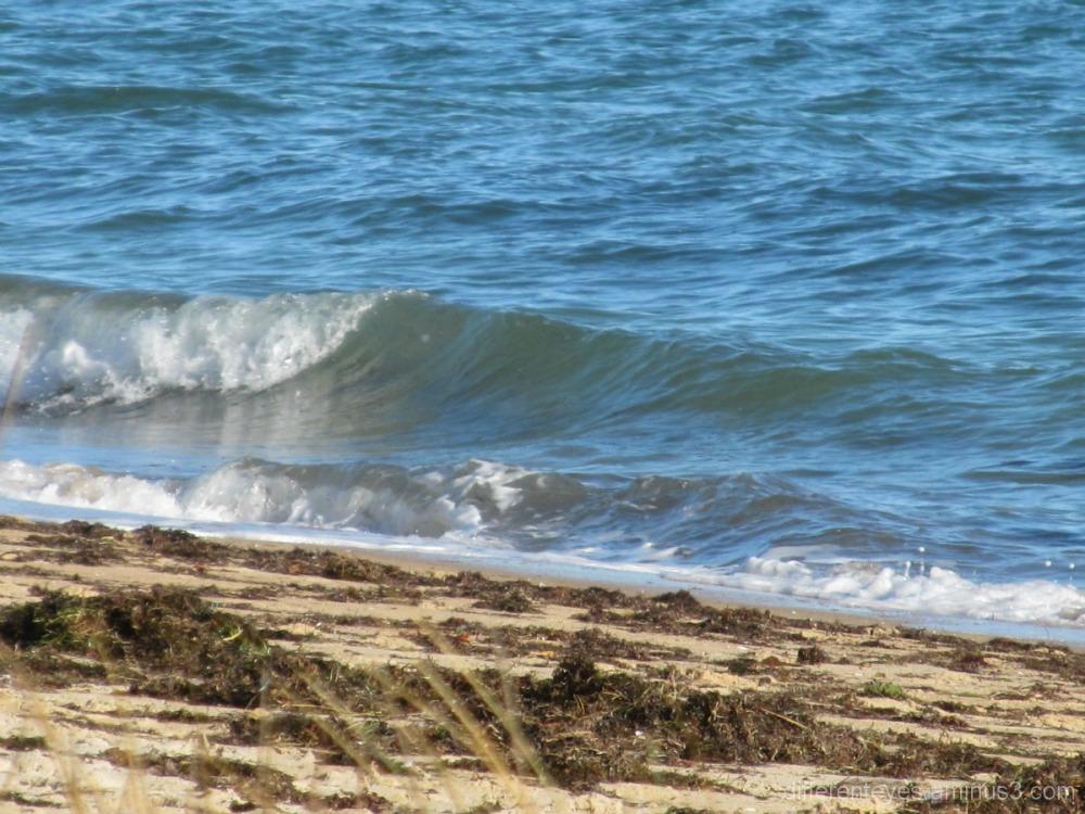 Winter waves on Dromana beach