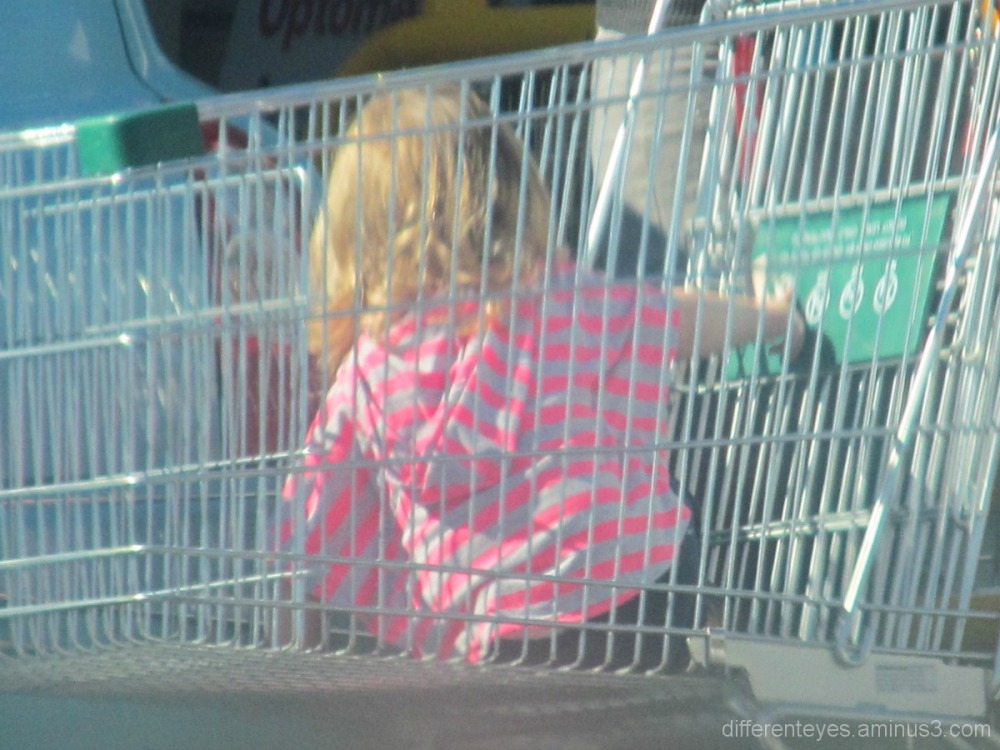 Child in a shopping trolley