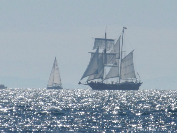 Tall ship passing Portsea