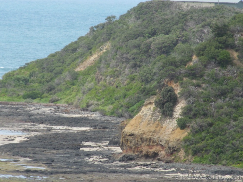 Rocky coastline near Flinders Beach